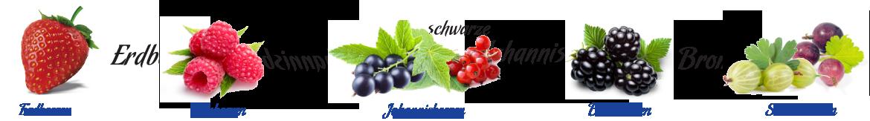 home-beeren-uebersicht