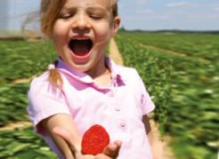 teaser-erdbeeren-begeisterung